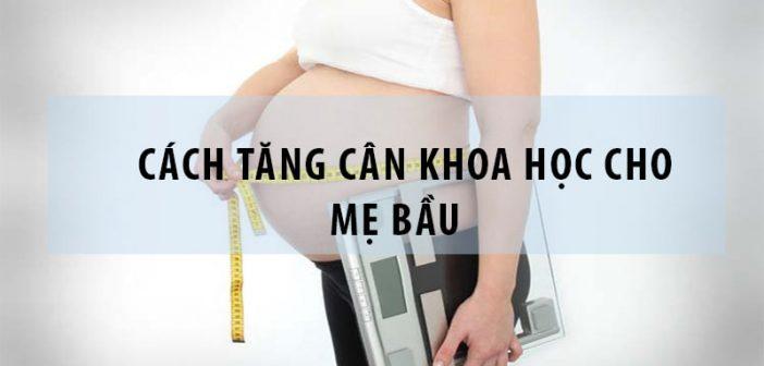 Cách tăng cân khoa học cho các mẹ bầu