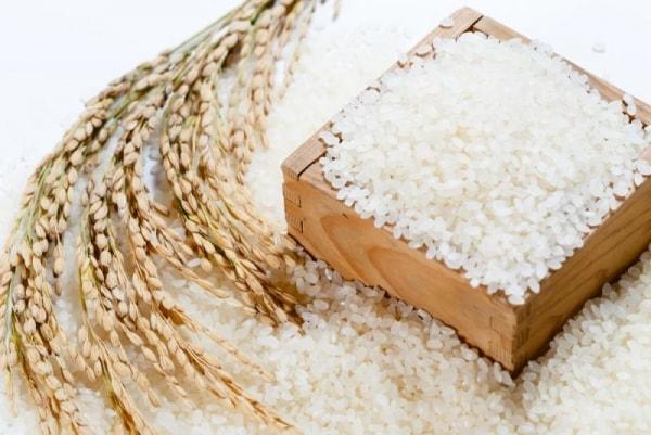 Gạo cung cấp calo và protein cần thiết trong một ngày