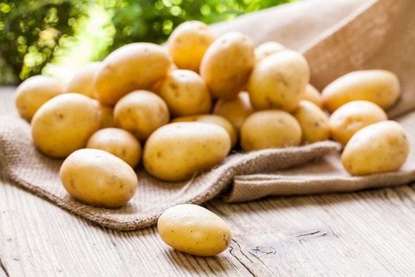 Khoai tây thực phẩm giàu tinh bột có giá trị dinh dưỡng cao
