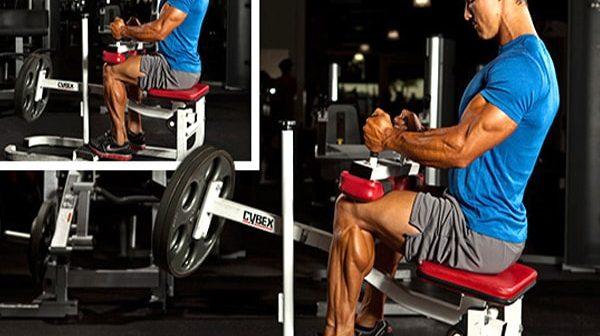 7 sai lầm khi tập cơ bắp chân bạn thường mắc khi tập thể hình