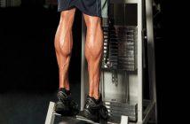 Tổng hợp các bài tập giúp cơ bắp chân to và săn chắc