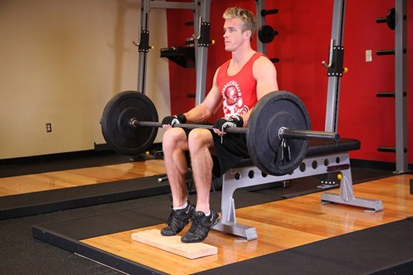 Bài tập Barbell Seated Calf Raise