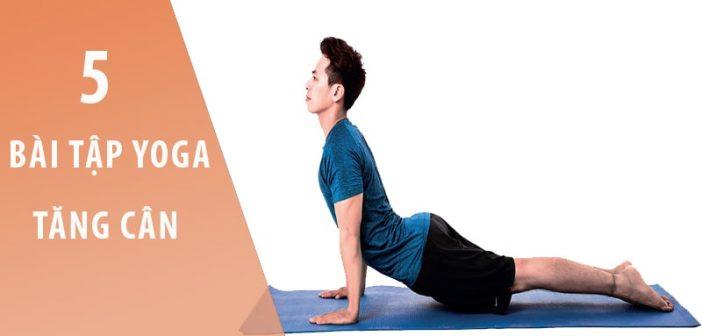5 Bài tập yoga tăng cân dành cho nam giới