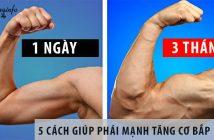 5 Cách giúp phái mạnh tăng cơ bắp trong 3 tháng