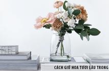Cách giữ hoa tươi lâu trong bình đơn giản, hiệu quả