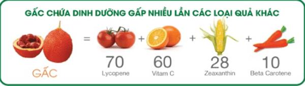 Thành phần của sản phẩm nước gấc G3