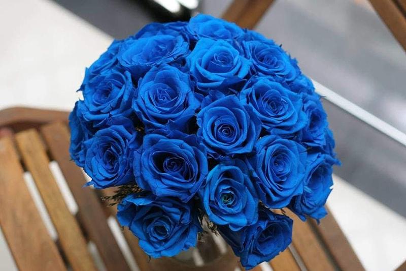Hoa hồng xanh hợp tuổi Kỷ Hợi (1959) ngũ hành thuộc Mộc